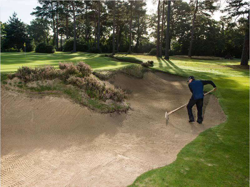 Rất nhiều người không có thói quen cào cát khi thực hiện kỹ thuật đánh cát golf