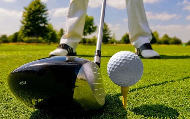 Thành phần của golf course có nhiều thuật ngữ khác nhau