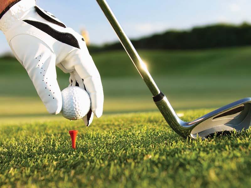 Luật chơi golf cũng quy định cụ thể về các loại gậy được phép sử dụng