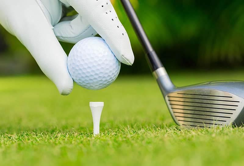 Hiện nay có rất nhiều loại tee golf khác nhau