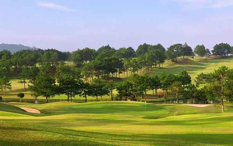 Đà Lạt là thành phố nổi tiếng nên thơ nên tập trung rất nhiều sân golf đẹp