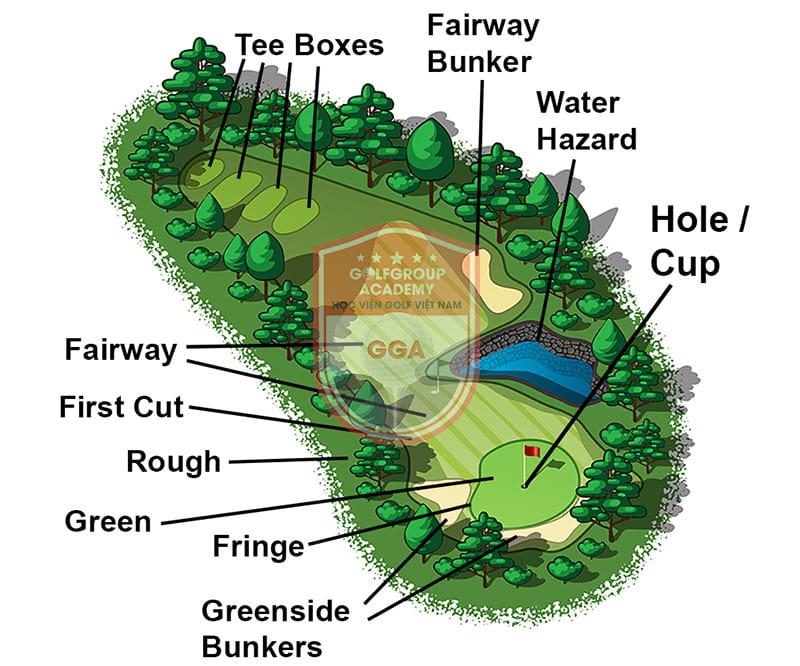 Fairway được tính từ tee đến vùng cỏ green