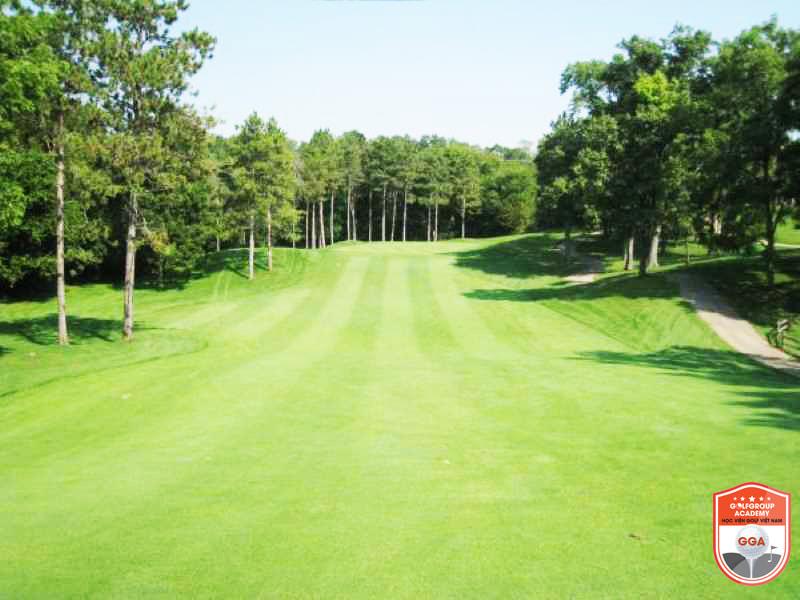 Luật về fairway theo Hiệp hội Golf Thế Giới