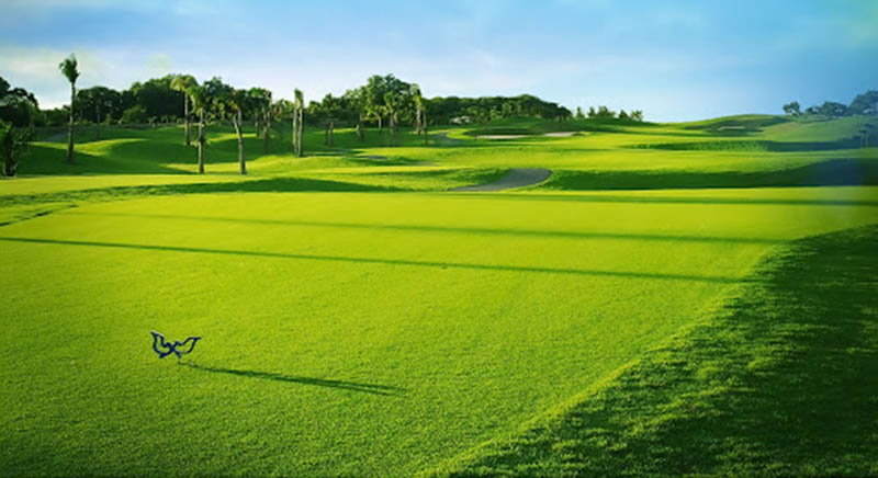 Sân golf Twin Doves có diện tích lên tới 165 ha
